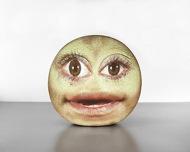 TONY OURSLER Soft 79, 2011