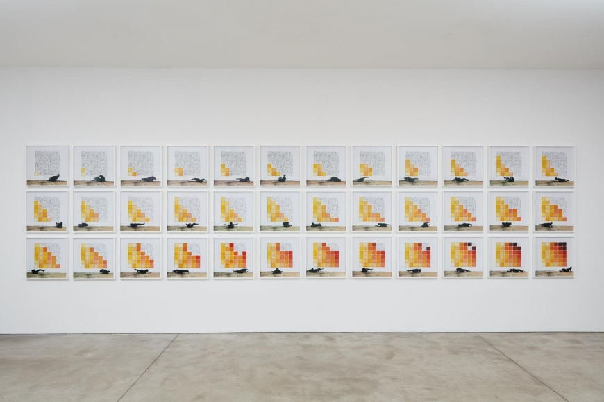 Robin Rhode, The Geometry of Colour installation view 1