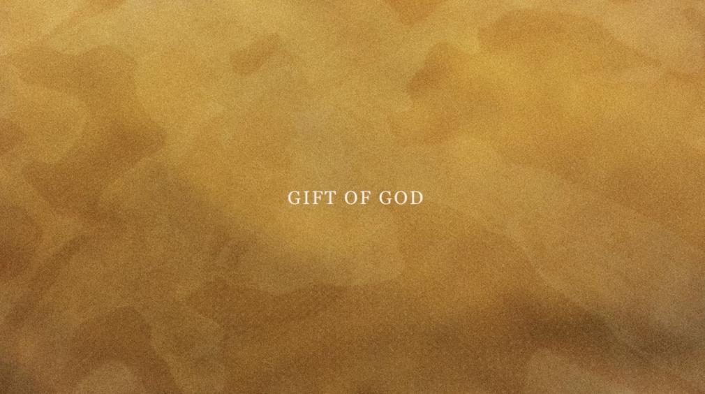 NARI WARD, Gift of God, 2020