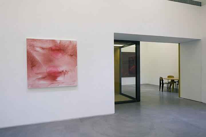 Shirazeh Houshiary: Through Mist Installation view 4