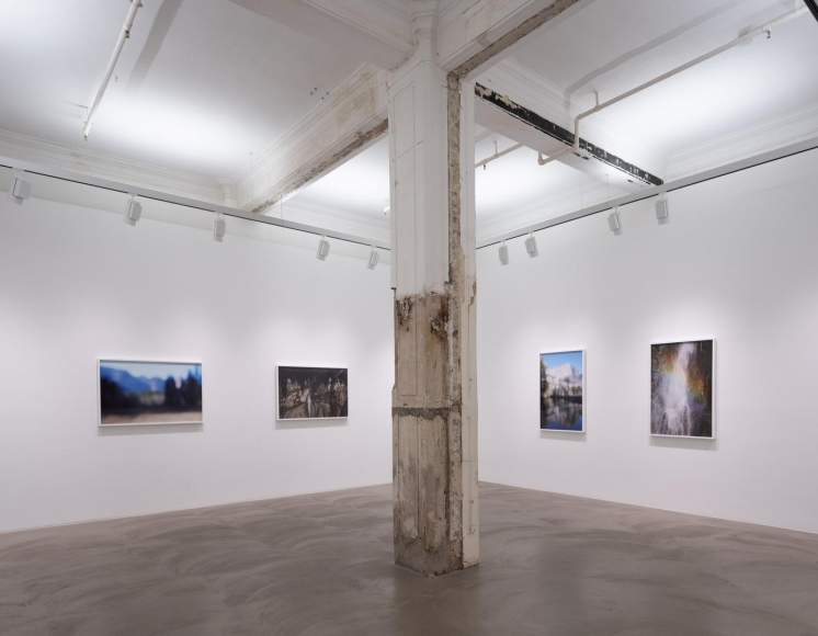 CATHERINE OPIE So long as they are wild installation view 8
