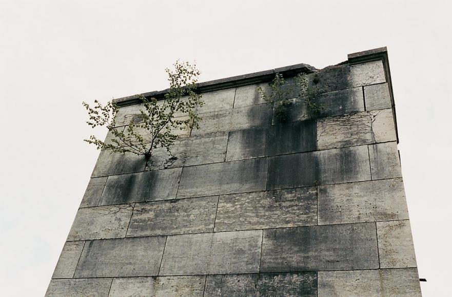 JUERGEN TELLER Nürnberg Spring 7, Bubenreuth, 2005