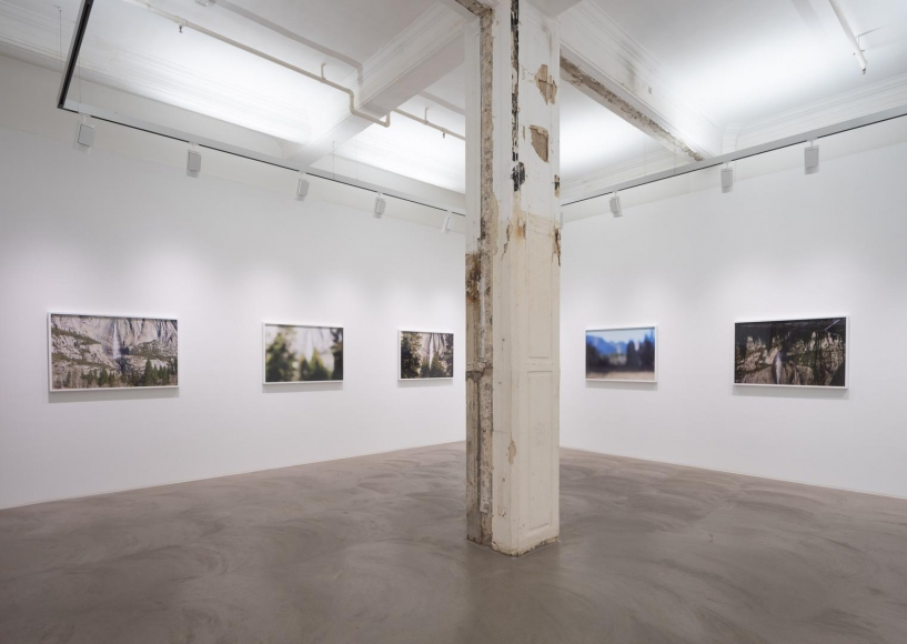CATHERINE OPIE So long as they are wild installation view 1