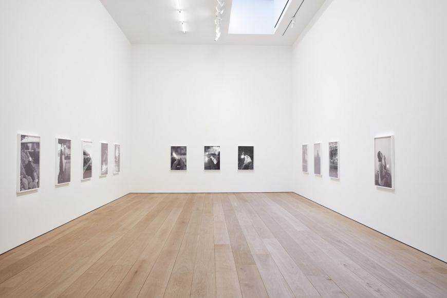 Catherine Opie: The Modernist Installation view 3