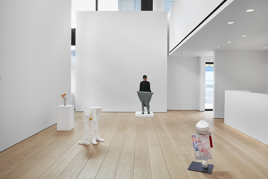Installation view of Erwin Wurm's exhibition Yes Biological at Lehmann Maupin, New York, 2020, View 5