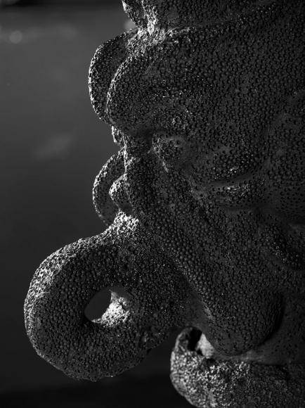 Pazuzu (Detail), 2014