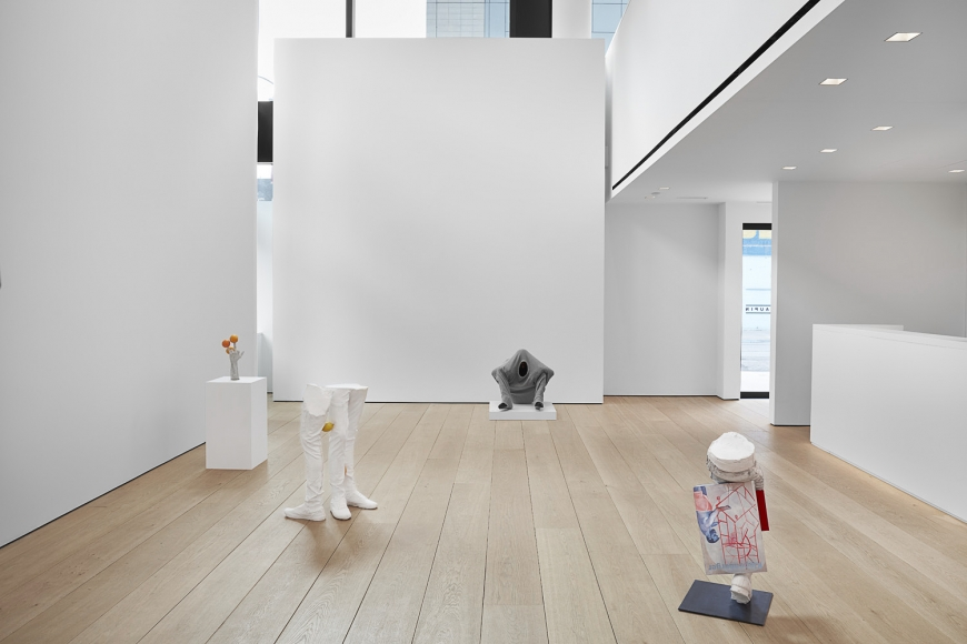 Installation view of Erwin Wurm's exhibition Yes Biological at Lehmann Maupin, New York, 2020, View 6