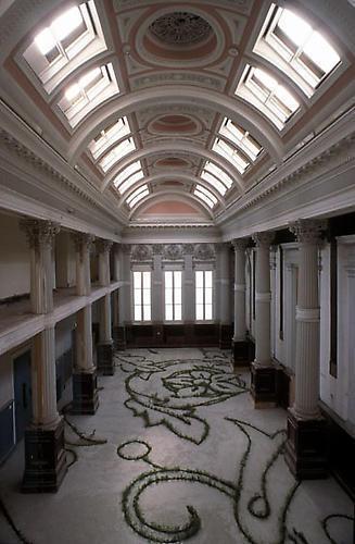 ANYA GALLACCIO Glaschu (planted installation at the Lanarkshire House,