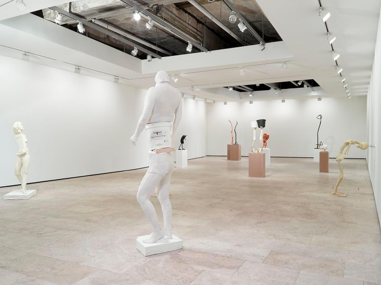 ERWIN WURM: Synthesa Installation view 4