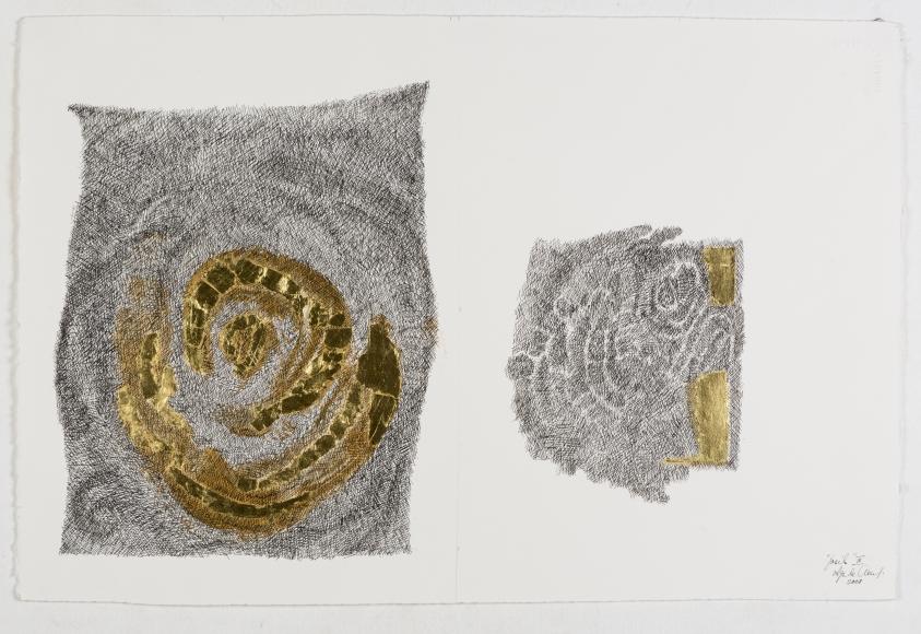 Olga-de-Amaral-Fósil-III