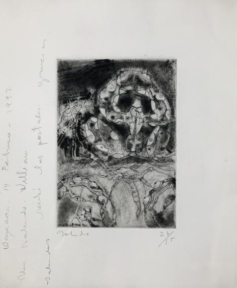 Francisco Toledo         Sapos, 1996