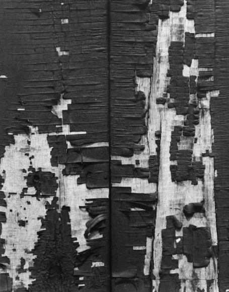 Aaron Siskind Chicago 53, 1952 Gelatin silver print, printed c.1952 14 x 11 inches
