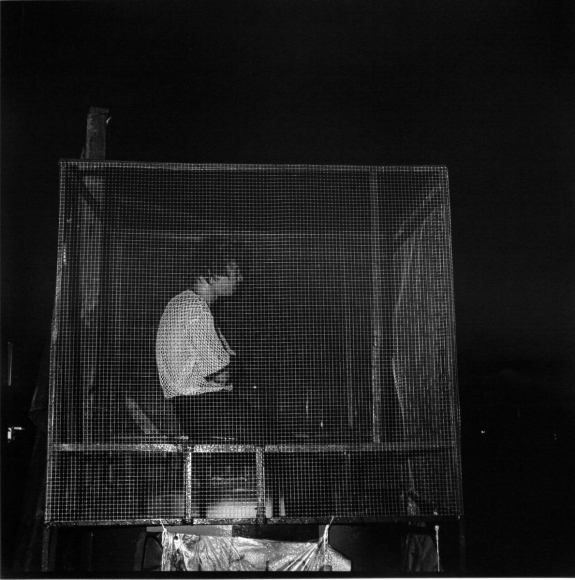 Dunking Cage, Georgia, 1976 	Gelatin silver print, printed c. 1976, 	19 3/4 x 15 7/8 in.