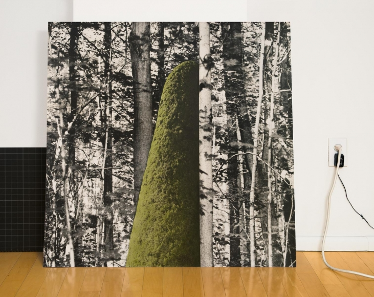 Outing in the Studio, 2014, Chromogenic print. 42 x 53 inches