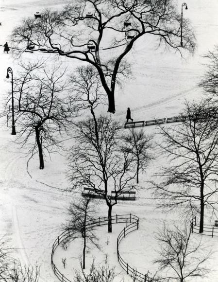 André Kertész - Washington Square Day, 1954  | Bruce Silverstein Gallery
