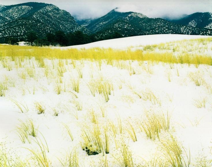 Eliot Porter -  Grass, Snow, Sangre De Christo, Mountains, Great Sand Dune National Monument, Colorado, September 30, 1958  | Bruce Silverstein Gallery