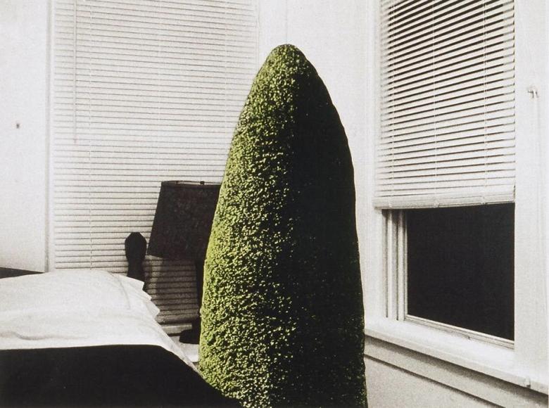 Eileen Neff - The Visit, 1997 | Bruce Silverstein Gallery