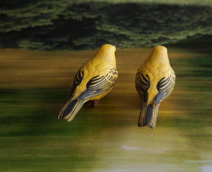 Eileen Neff - Yellow Birds, 2014 | Bruce Silverstein Gallery