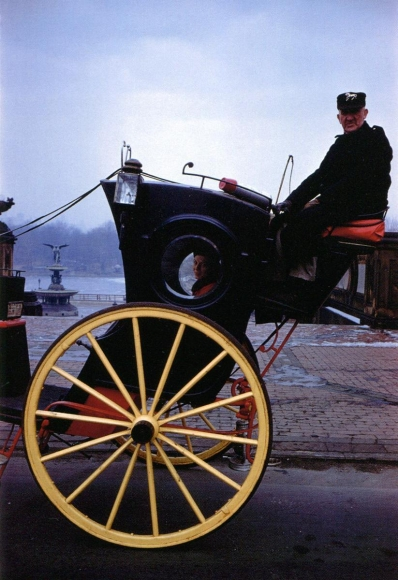 Inge Morath -  Carriage in Central Park, New York, 1958  | Bruce Silverstein Gallery