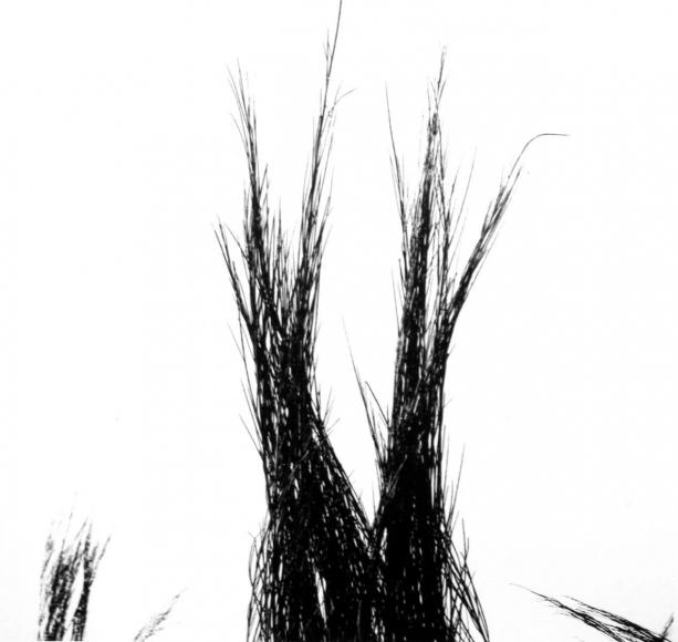 Aaron Siskind Viterbo Broom 17, 1967 Gelatin silver print, printed c.1967 10 x 8 inches