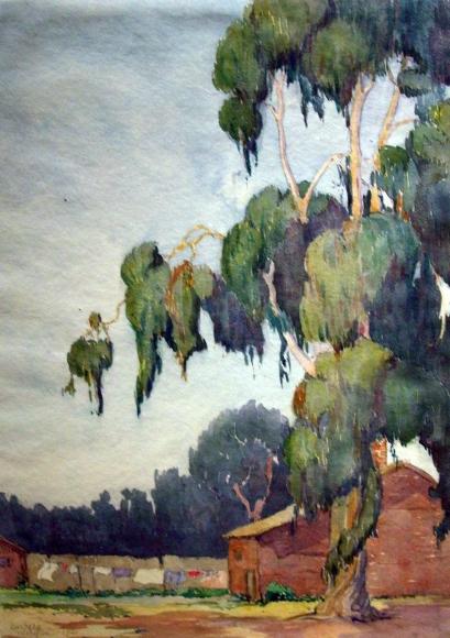 Barbara Morgan - Early California Eucalyptus Tree, 1921 Watercolor on paper | Bruce Silverstein Gallery