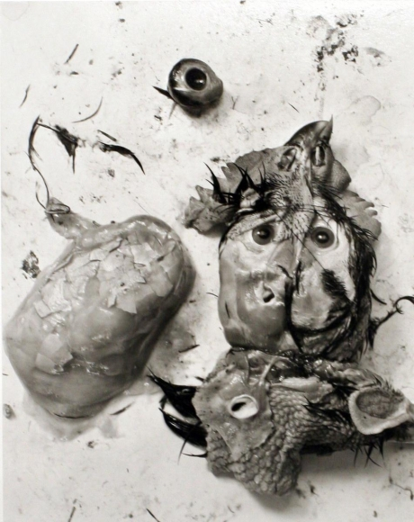 Frederick Sommer - Chicken Parts, 1939 Gelatin silver print mounted to board, printed c. 1990s | Bruce Silverstein Gallery