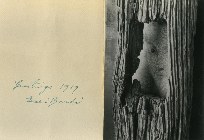 André Kertész - Face in Tree, 1959 Gelatin silver print | Bruce Silverstein Gallery
