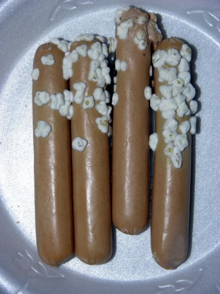 Grubstein, MarcMoldy Hotdogs, 2005 	Chromogenic print 	41 x 31 inches