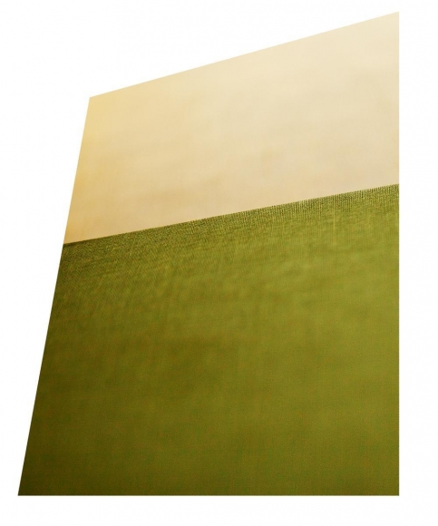 Bookish, 2014 Chromogenic print with bookshelf. 11 x 8 3/4 inches