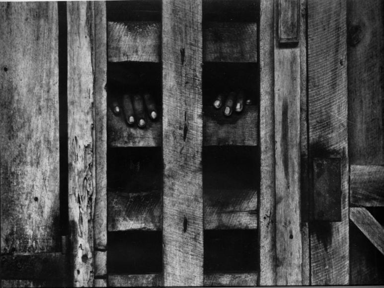 W. Eugene Smith - Hands in Stockade, Africa, 1954  | Bruce Silverstein Gallery
