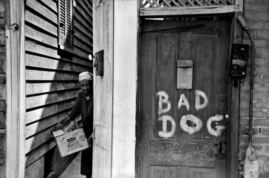 Bad Dog, New Orleans, 1952 	Gelatin silver print mounted to board, printed c. 1952 	11 x 14 inches