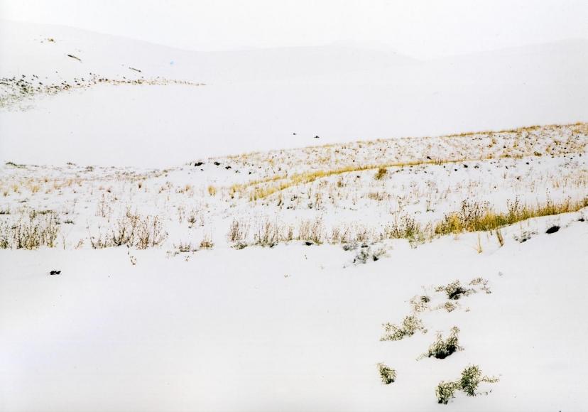 Eliot Porter -  Sand Dunes, Grass, Snow, Great Sand Dune National Monument, Colorado, September 30, 1958  | Bruce Silverstein Gallery