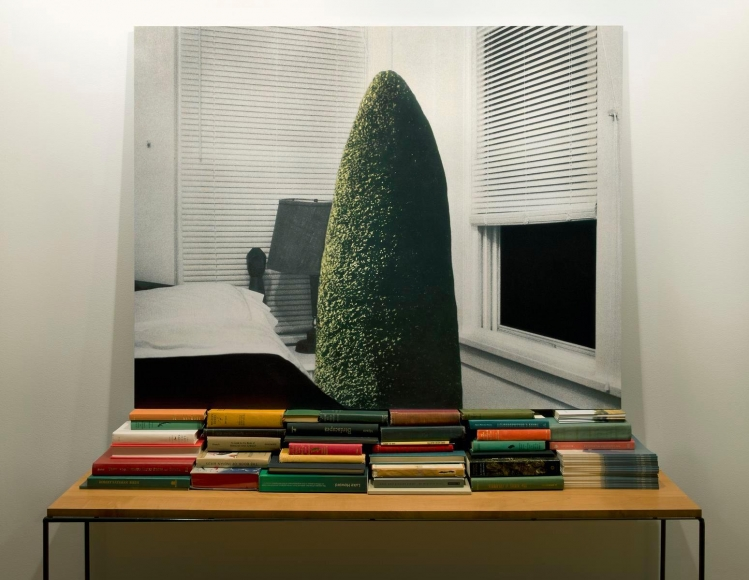 Visit in the Studio, 2014, Chromogenic print. 40 x 51 1/2 inches