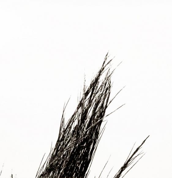 Aaron Siskind Viterbo Broom 34, 1967 Gelatin silver print, printed c.1967 10 x 8 inches