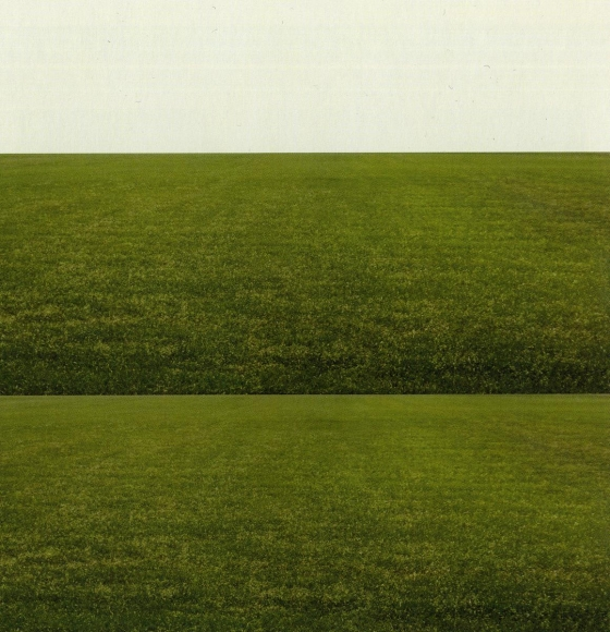 Eileen Neff - The Field and the Plane, 2007  | Bruce Silverstein Gallery
