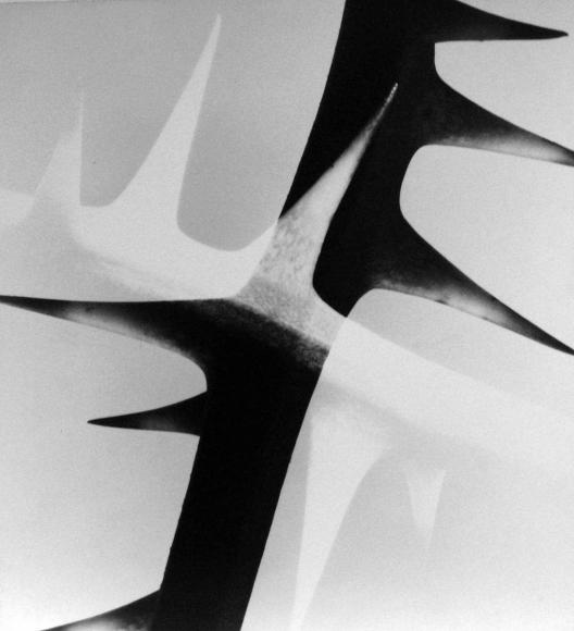 Barbara Morgan - Wire Briar Limberlock, 1943 Photomontage mounted to board, printed 1943 | Bruce Silverstein Gallery