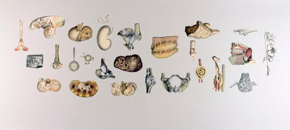 Frederick Sommer - Untitled (Inhalt), 1997 Collage on paper   Bruce Silverstein Gallery