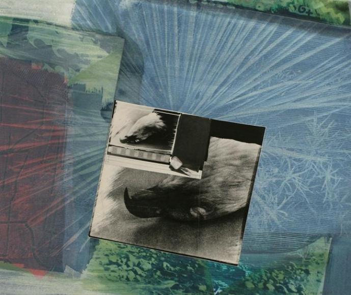John Wood - Eagle Pelt, 1988 Collage and cyanotype | Bruce Silverstein Gallery