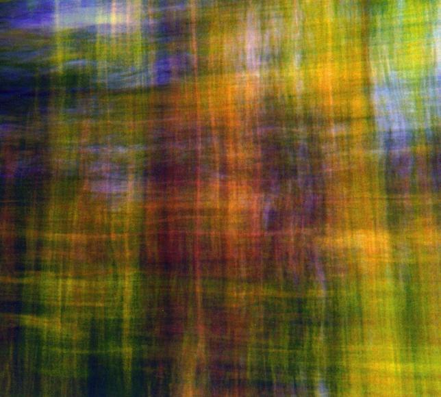 Eileen Neff - This and That, 2001  | Bruce Silverstein Gallery