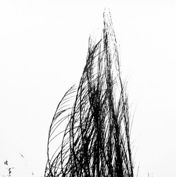 Aaron Siskind Viterbo Broom 49, 1967 Gelatin silver print, printed c.1967 10 x 8 inches