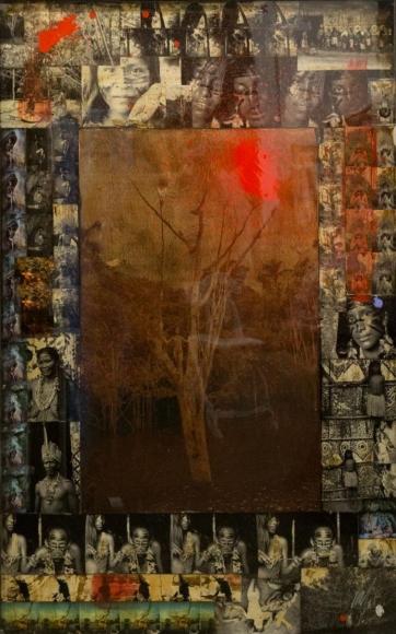 RaphaelMazzucco Amazon Tree, 2015