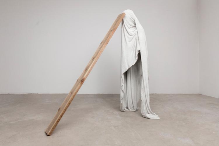 Steve Hash The Pity (Plank), 2019