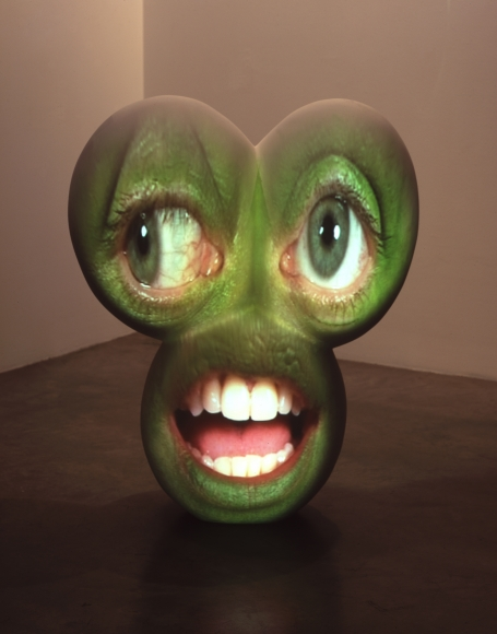 Tony Oursler, Coo, 2003