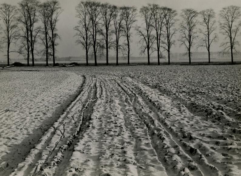 Albert Renger-Patzsch, Winter Landscape near Kaiserwerth, 1930, vintage gelatin silver print, 6 ½ x 9 7/8 inches