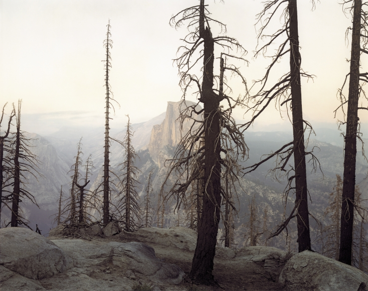 Richard Misrach,Yosemite (Burnt Forest and Half Dome),1988, c-print mounted on board paper, 20 x 24 inches