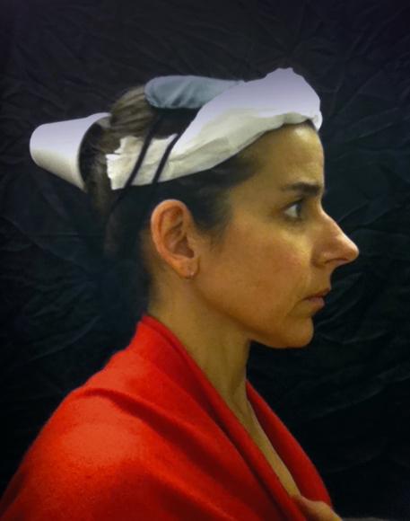 Nina Katchadourian, Lavatory Self Portrait in the Flemish Style #9, 2011