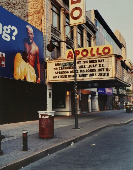 Alice Attie Harlem Series, 2000