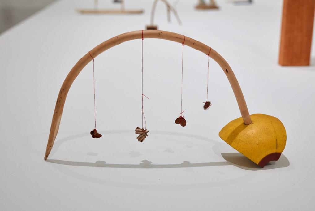 Cecilia Vicuña: Lo Precario/The Precarious