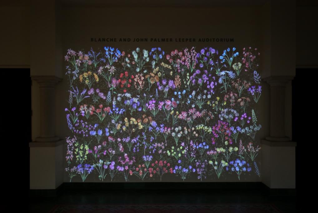 Jennifer Steinkamp: Botanic 3