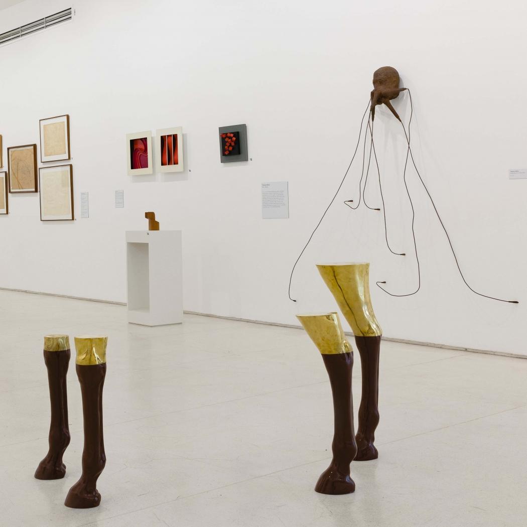 Vício impune: o artista colecionador